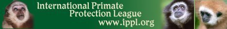 International Primate Protection League